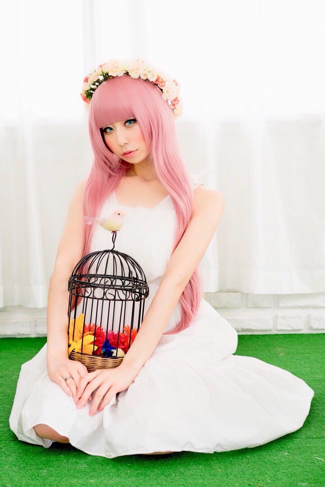 芝姫さんプロフィールページ