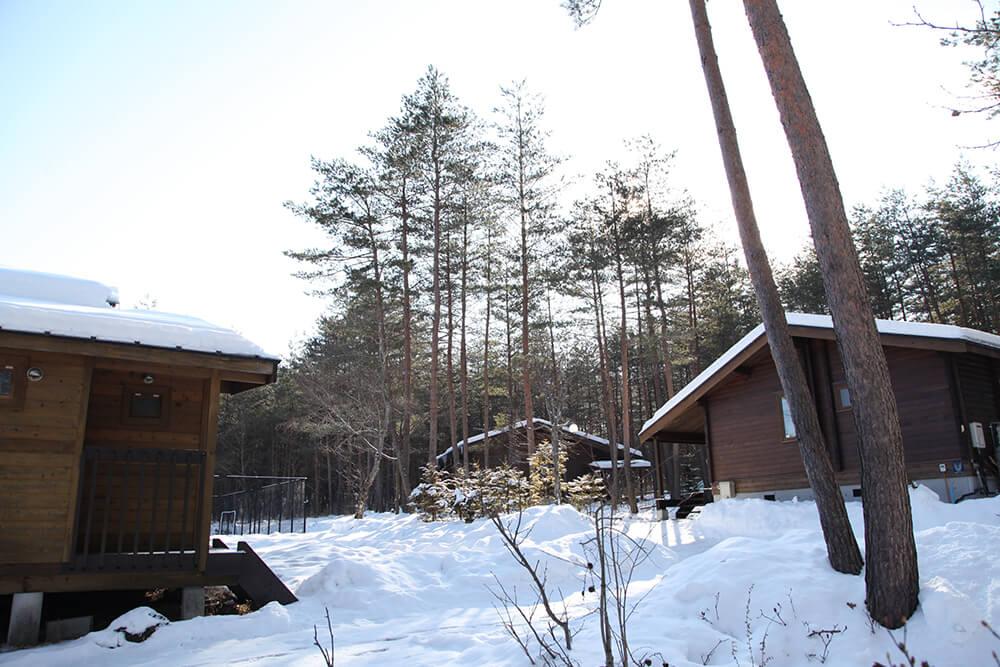 貸別荘ルネス軽井沢のコテージの周りに積もった雪