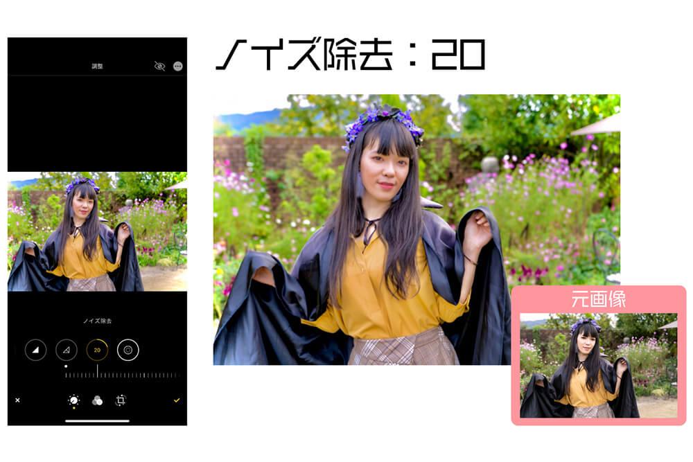 画像加工ステップ2の画像10
