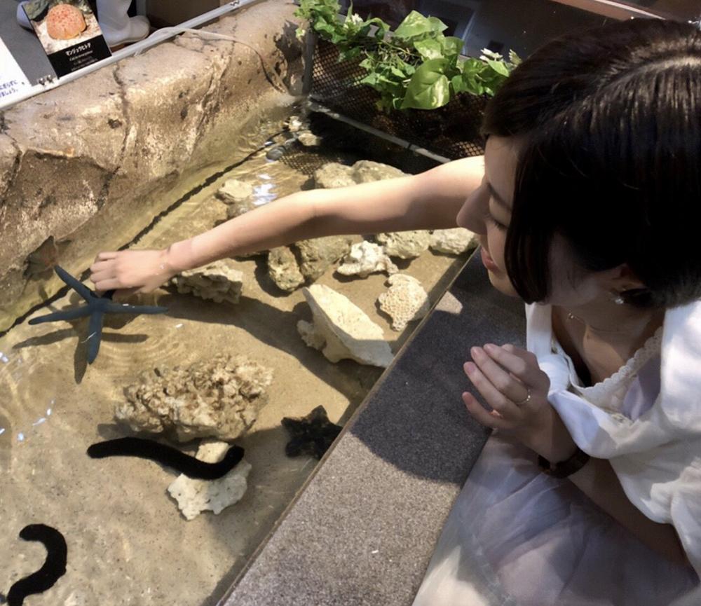コスプレイヤーにお勧めする新江ノ島水族館のタッチプール
