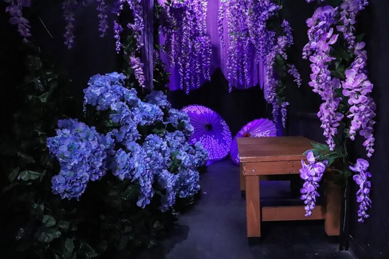 ハコスタジアム大阪の藤・紫陽花がある撮影場所
